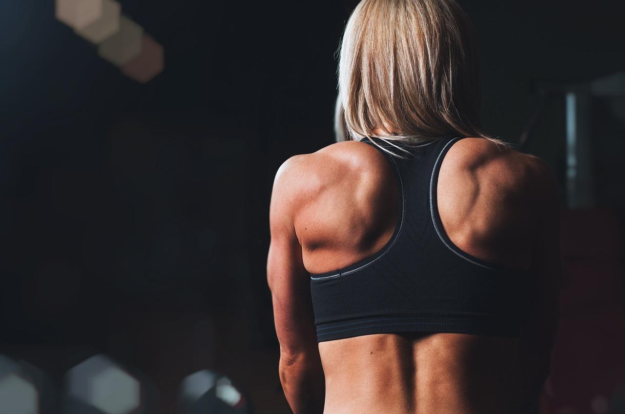 Разнообразие упражнений для укрепления мышц спины и живота
